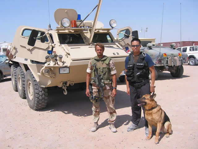 How To Adopt A War Dog Abc News